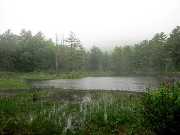 Pleasant Valley Hiking Lenox