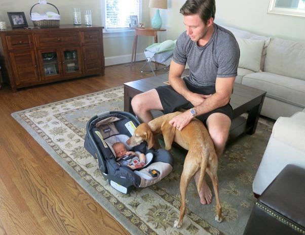 Dog Meeting Baby