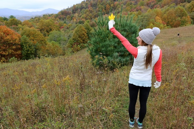 Appalachian Trail Hiking Banner Elk