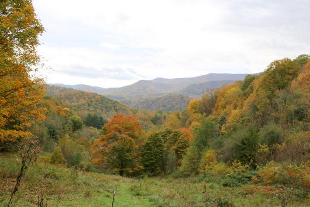 Appalachian Trail Hiking View Banner Elk