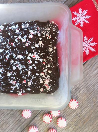 Coconut Oil Peppermint Chocolate Bark