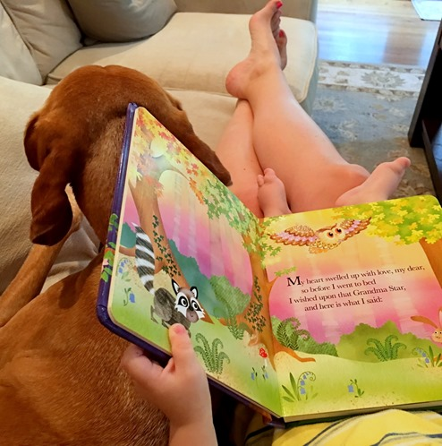 Reading Grandma Wishes Book