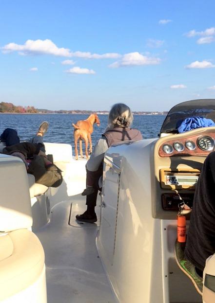 lake norman boat ride november