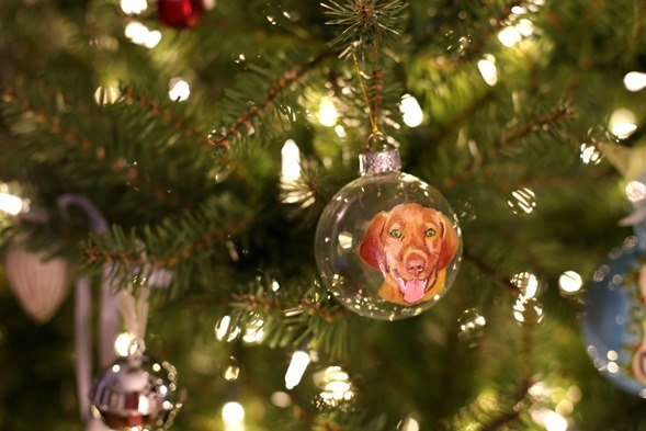 Sadie Ornament
