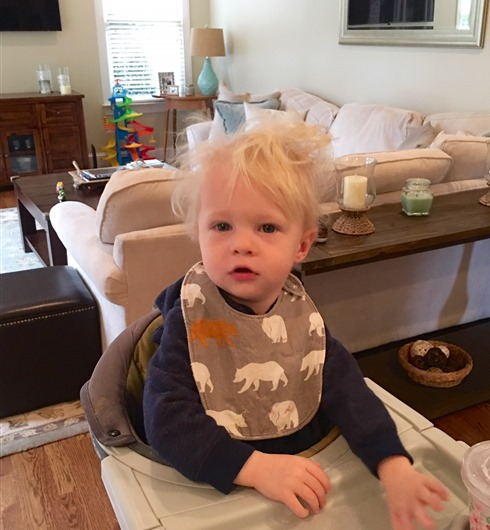 Chase Bed Head 19 mos