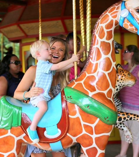 giraffe merry go round