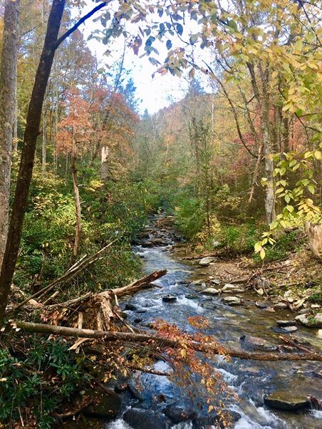 catawba falls hike in the fall asheville