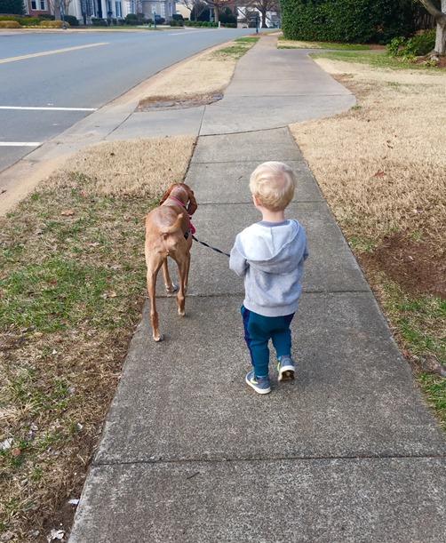Chase and Sadie Walk