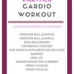 partner cardio workout