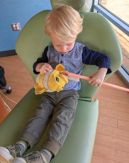 Chase at Dentist