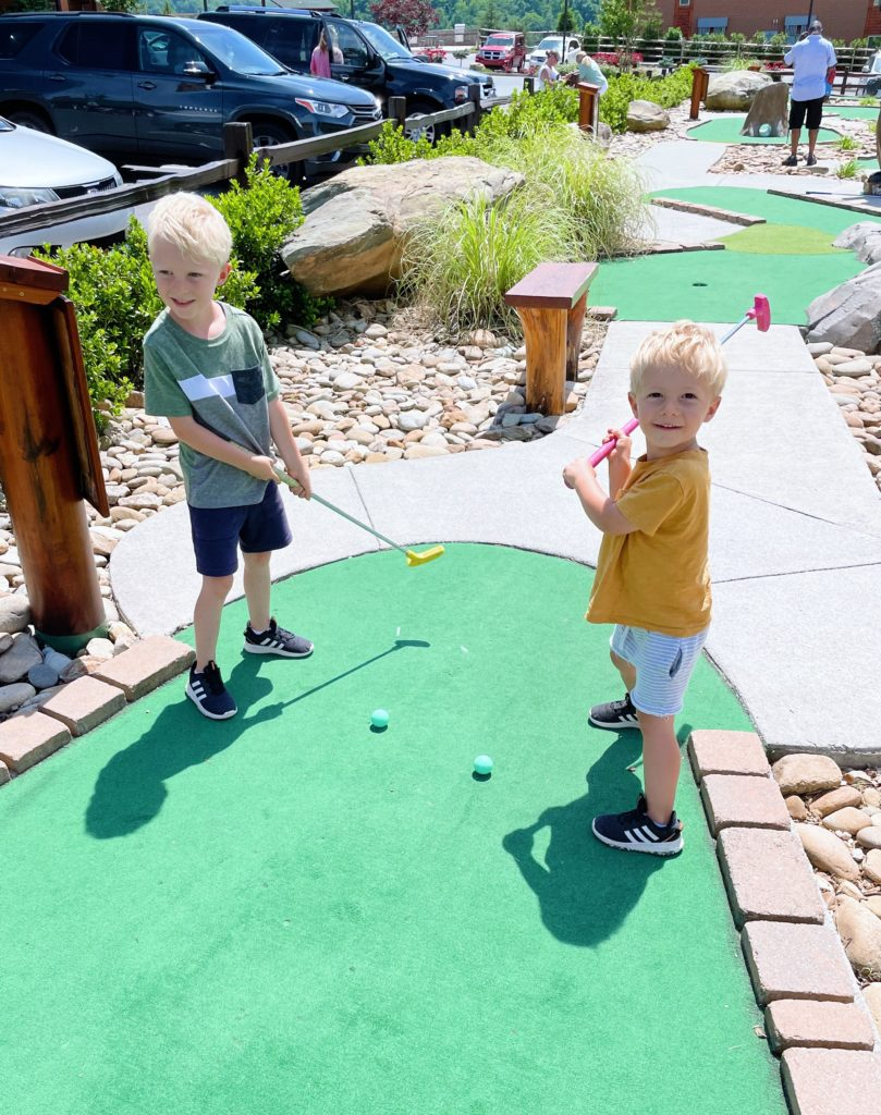mini golf ryder chase