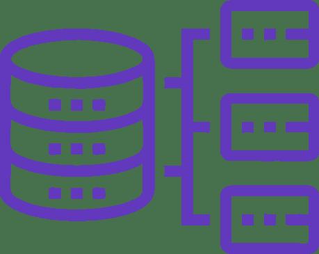 Data Architecture Consultants