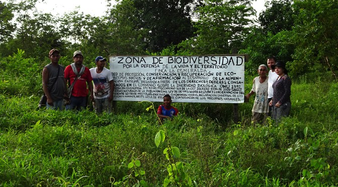 New Biodiversity Zone is created