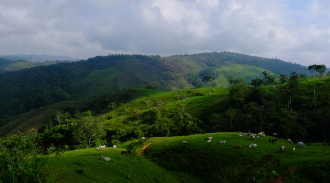 Campesino Reserve Zones