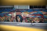 La paz es nuestra movimiento social