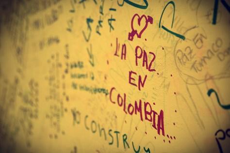 paz_web
