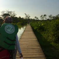 PBI abre convocatoria para Coordinador/a de Proyecto