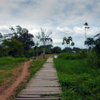 Un largo camino hacia la Nueva Vida