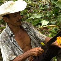 Organización comunitaria para enfrentar la pandemia: en la Comunidad de Paz la solidaridad prima