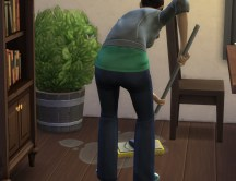 gardenplant-potted_in-gane_mopping