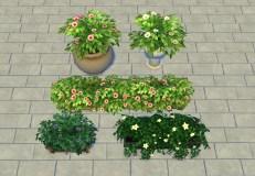 liberated-gardenstuff-override_after