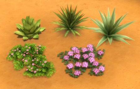 mts_plasticbox-1488952-pbox_liberated-plants-desert_02