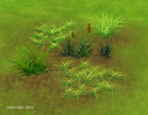 mts_plasticbox-1499296-liberated-grass_overrides-after