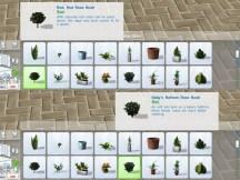 pottable-plants_cat-2