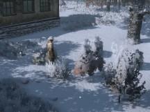 fv_decoshrubs_season-winter