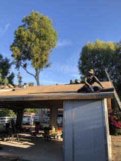 Barn Roof install