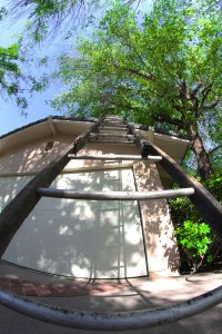 Old Ladder - Paul Bancroft Roofing- Los Angeles Roofing