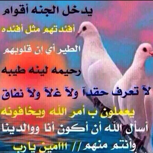 سرااب حاايل At Joodh2222 Twitter