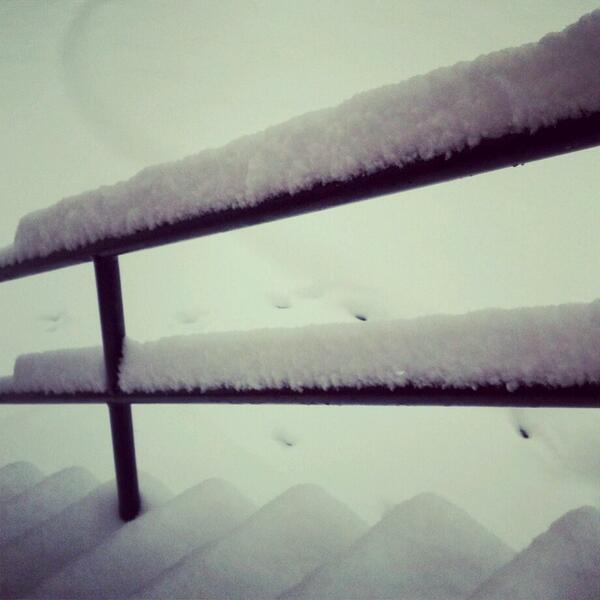 SNOW DAY! (1/6)