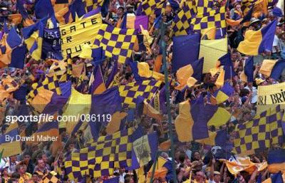 Image result for wexford gaa supporters hill 16 1996