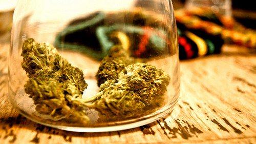 A weed newbie's guide to legal marijuana
