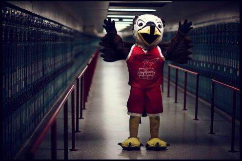 Image result for memorial seahawks mascot