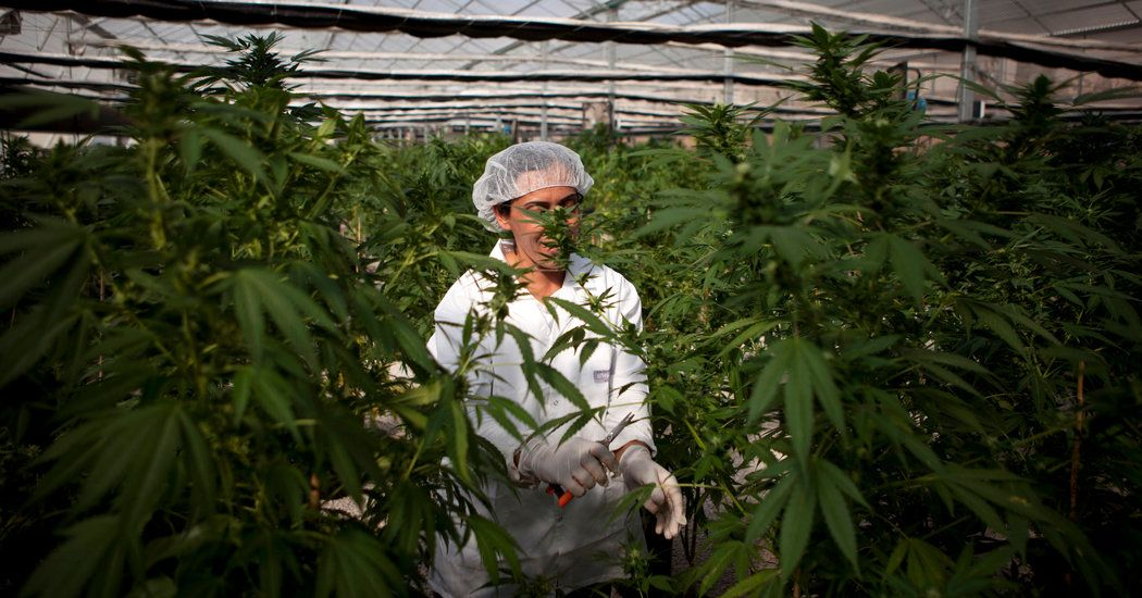 Israeli Cabinet Makes Move to Decriminalize Recreational Marijuana Use  (from @nytimes)