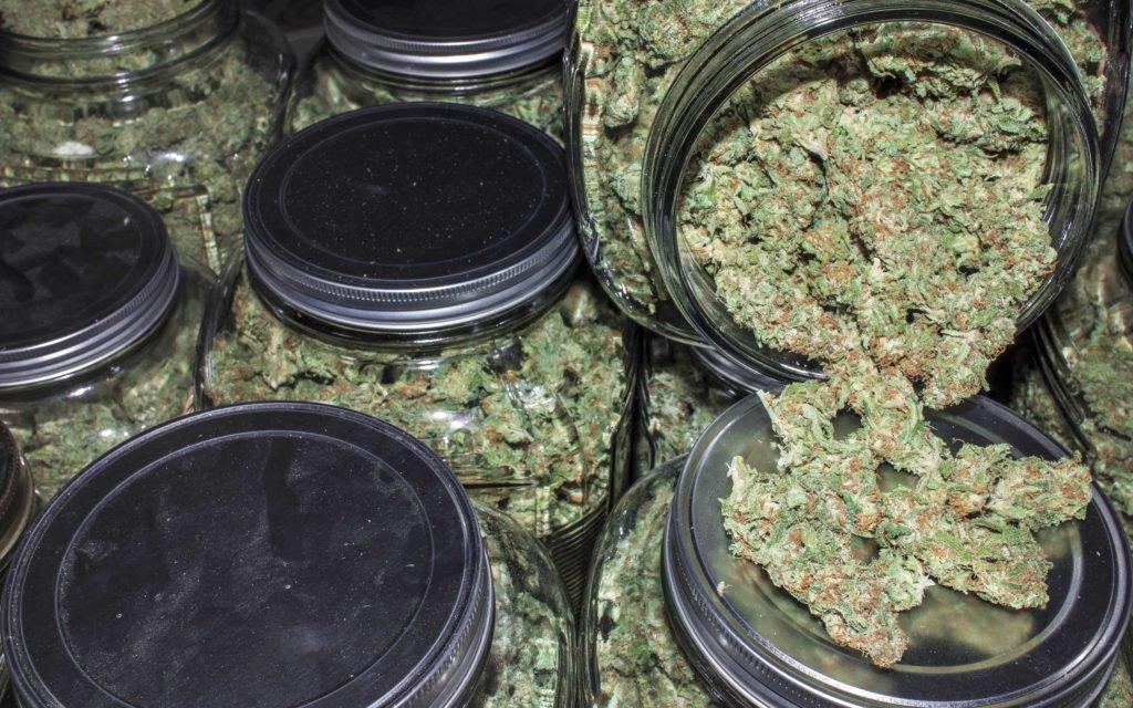 Pittsburgh Weeders? NFL Hall of Famer Wants In On Marijuana Market.