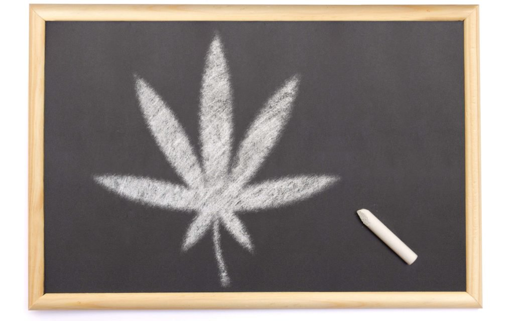 Add Your Voice To Our Latest Poll: Have Marijuana Laws Affected Your Education?