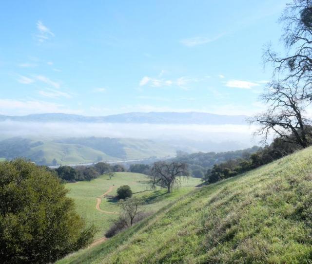 Morning Fog Love Pleasanton Ridge Ebrpdpic Twitter Com Yhjluyzq
