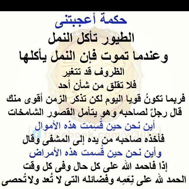 Mostafa Metwaly 96metwaly Twitter