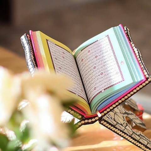 شبكة الغند الإسلاميه من فقد الله ماذا وجد Mms