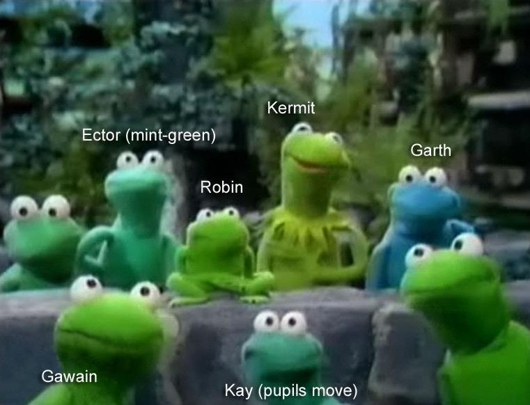 Gus Andrews On Twitter Jessamyn And Someone Translating For My Own Puppets Taught Me Today That The Latino Kermit Is Rana Rene Laranadlce Has Many Memes