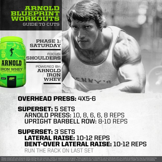 Arnold blueprint workout day 1 viewyoga musclepharm on twitter mp workout of the day arnold arnold schwarzenegger blueprint workout day 5 malvernweather Images