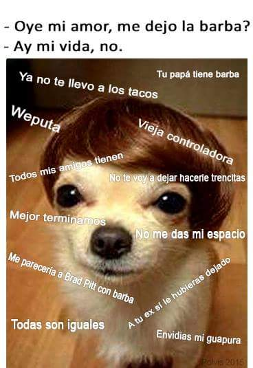 Desmadre De Eva On Twitter Oye Mi Amor Me Dejo La Barba Memes
