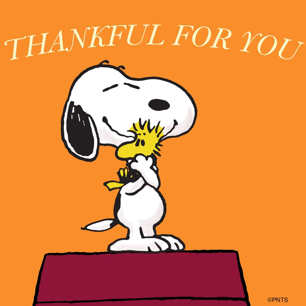 What Are You Thankful For This Year