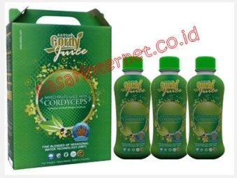 Cordy Juice kombinasi antara Cordyceps dan 20 jenis buah-buahan
