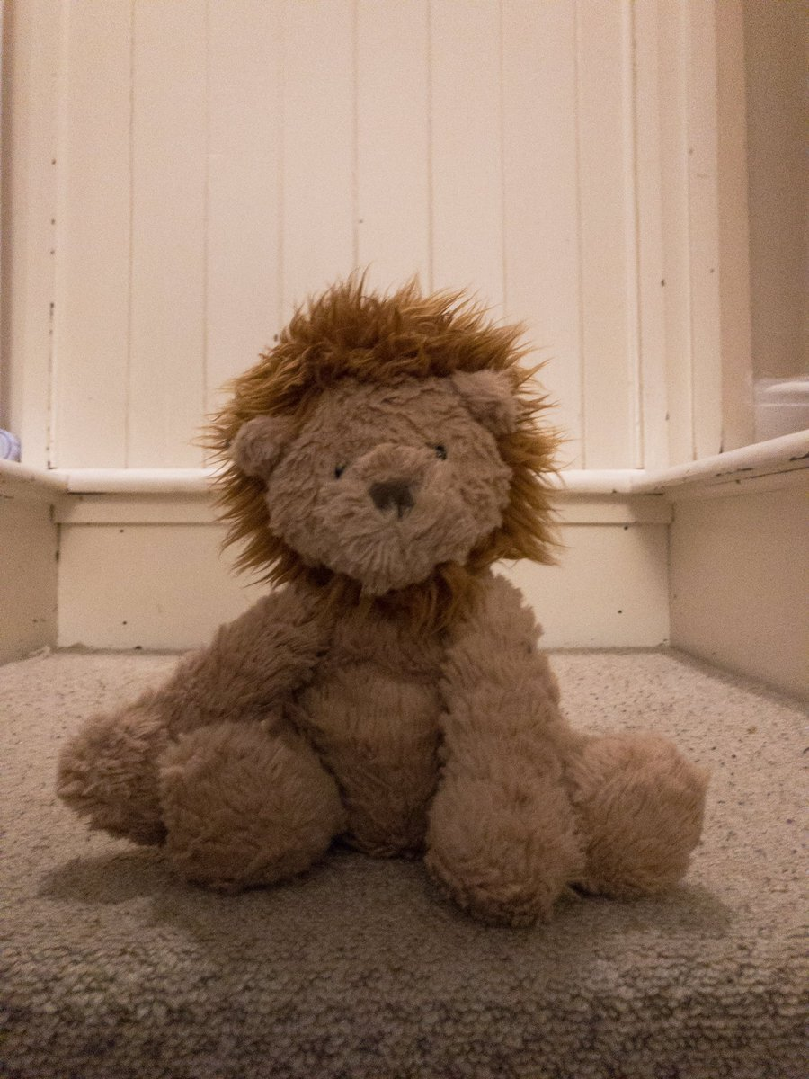 Got home, found child two's lion on the stairs. He doesn't look impressed he was left out of the cot.