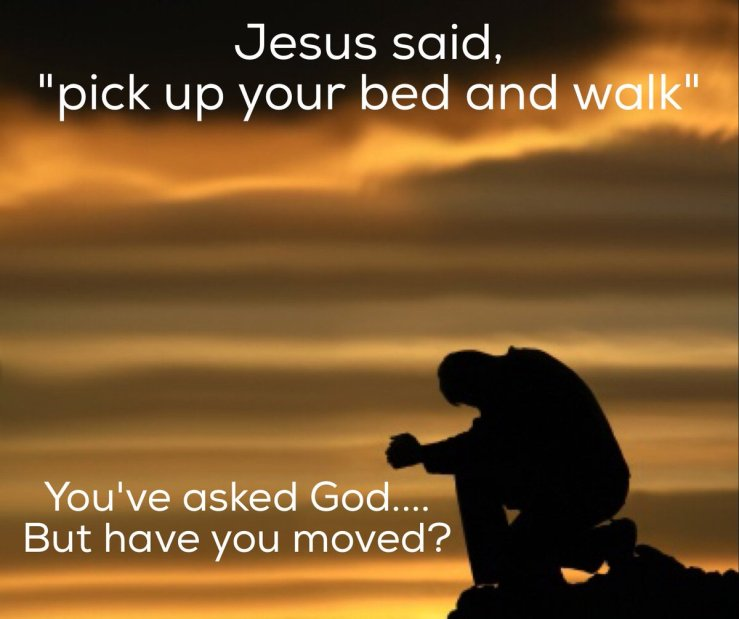 Image result for free photo of John 5:1-16