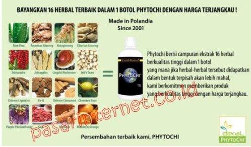 Manfaat dan khasiat kandungan Phytochi untuk kesehatan